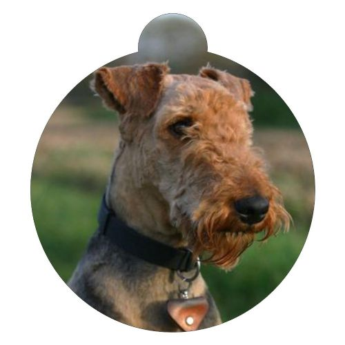 Airedale Terrier Picture ID tag